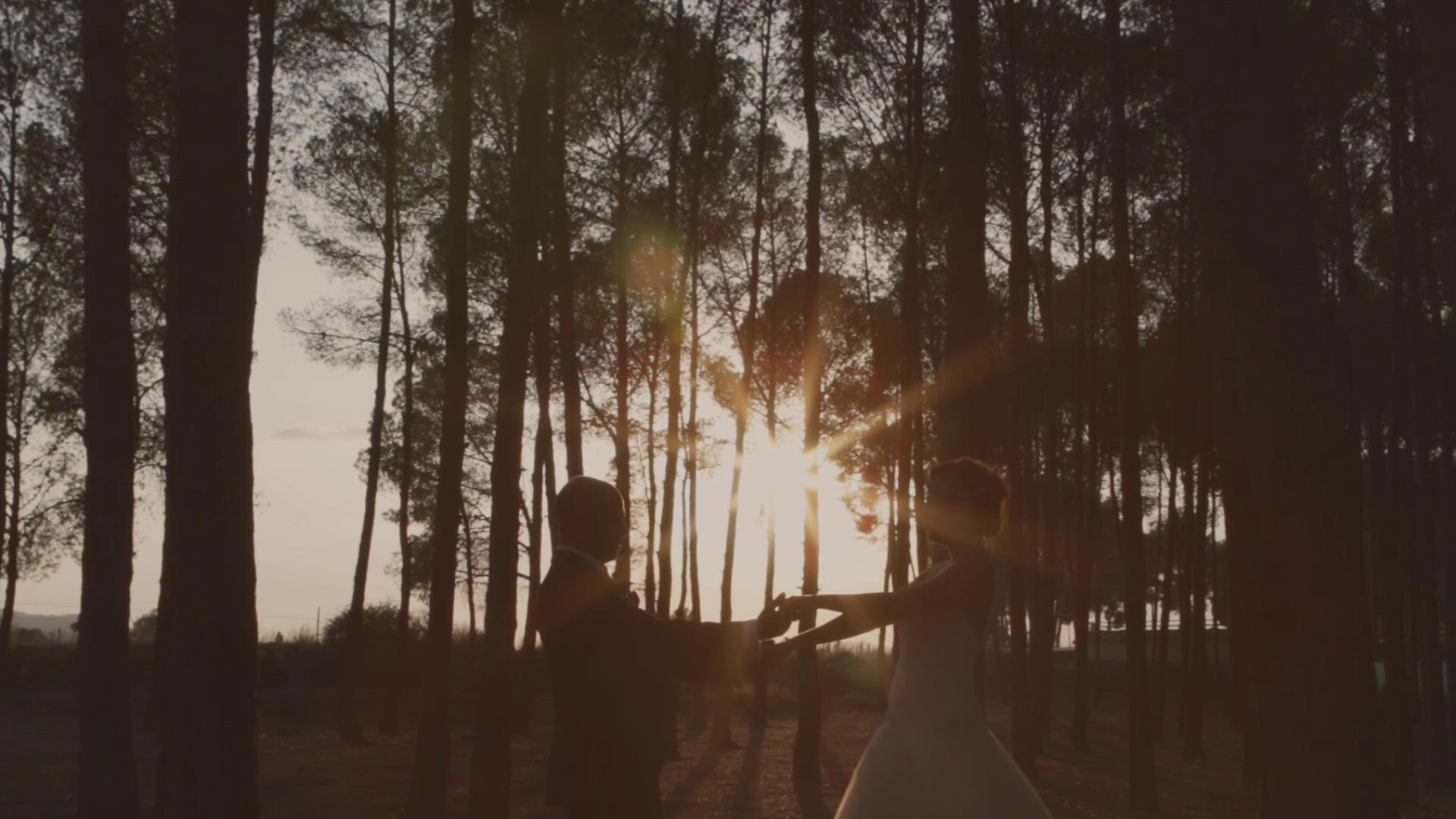 Video de bodas Alicante
