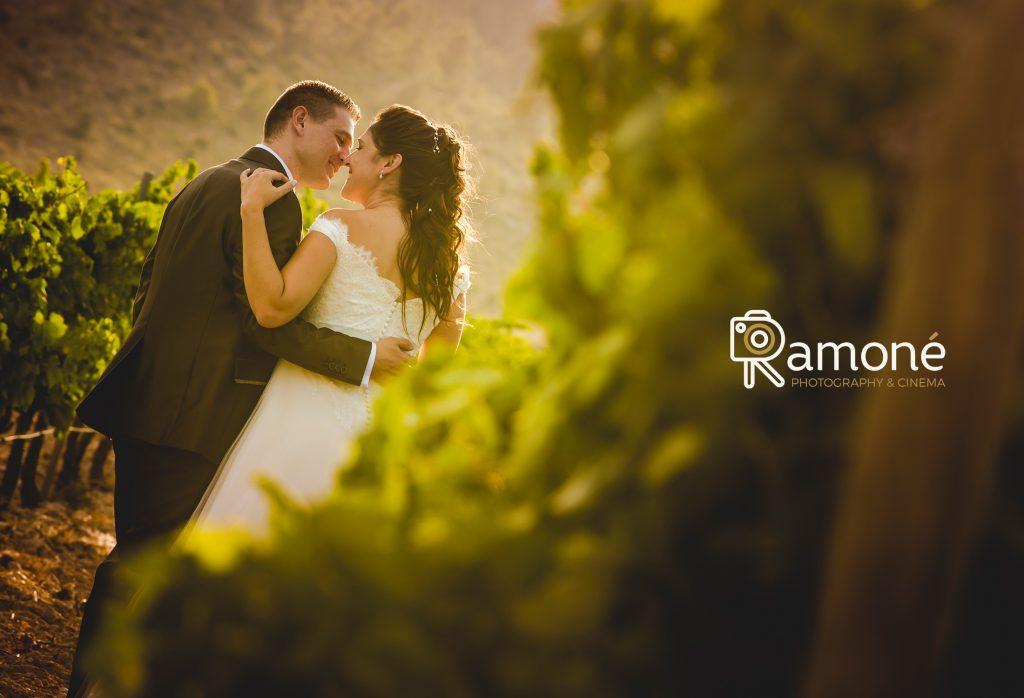fotógrafos de boda en Alicante
