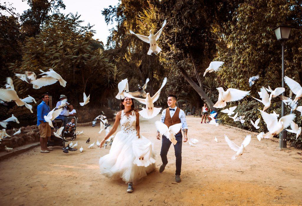 jugando con las palomas en el parque maría Luisa en Sevilla